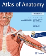 Atlas of Anatomy Thieme